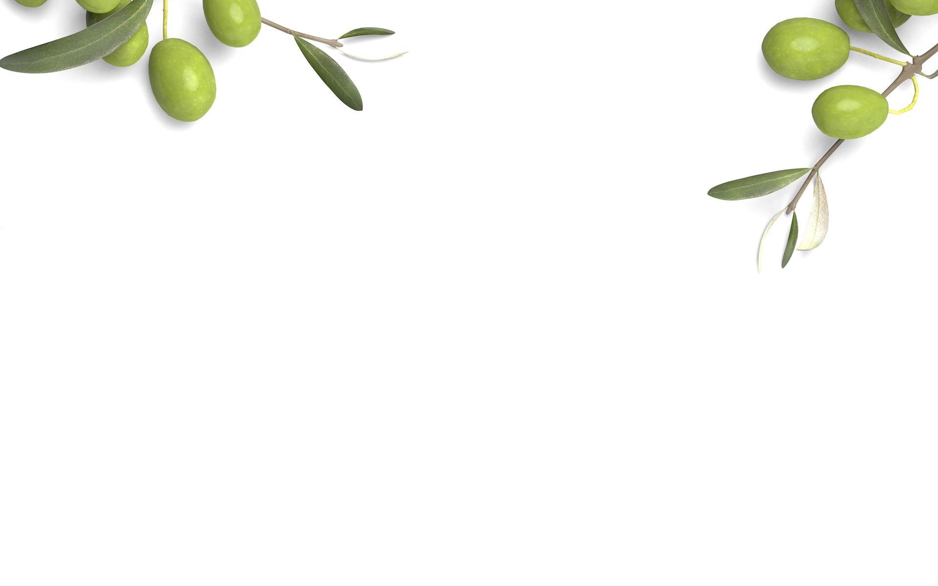 Kalamazoo Olive Company